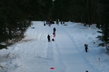 Nearby sledding hill at Lake Wenatchee State Park. Fun for the whole family!